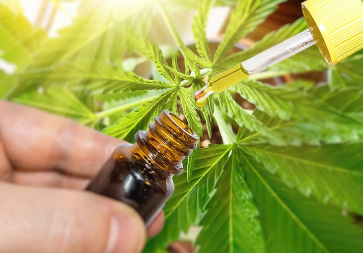 CBD for Sleep and Insomnia oil and tincture
