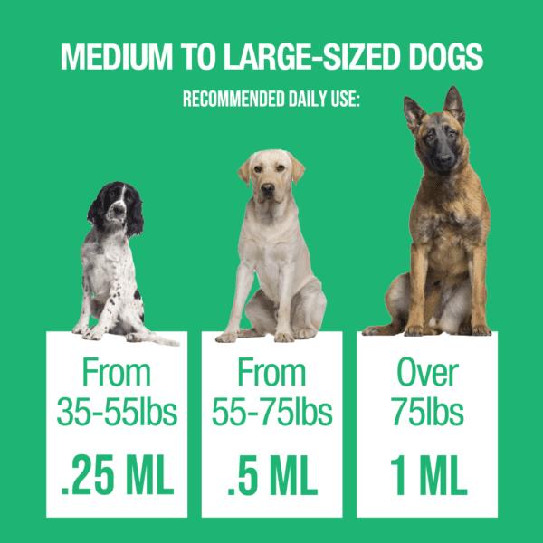 dog drops medium large 1 Hempzilla CBD